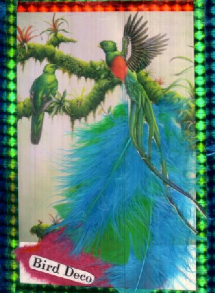 birddecobirdfparidisedecoholics32002.jpg